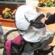 Ratenkredit Kinderwagen online abschließen