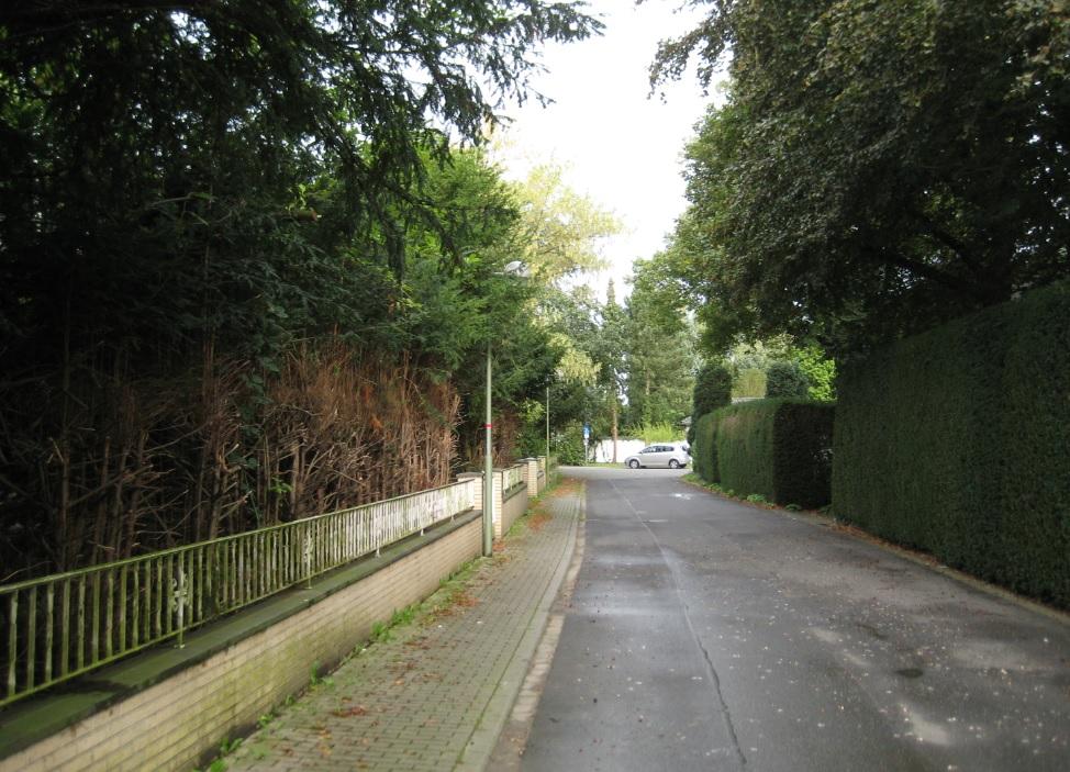 Haus im Grünen kaufen