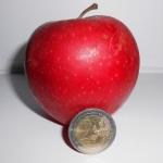 PSA Direkt bietet 1,50% Tagesgeldzinsen